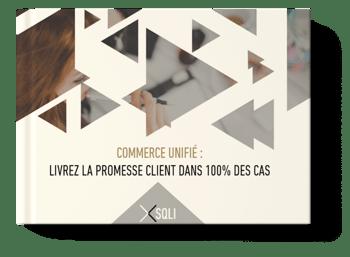 Ebook-commerce-unifie